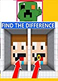 Minecraft - Spot The Difference 8776 (English Edition)
