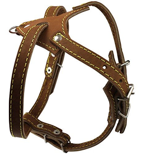 """Brown Genuine Leather Dog Harness, 16.5""""-20"""" Chest Size, 1/2"""" Wide"""