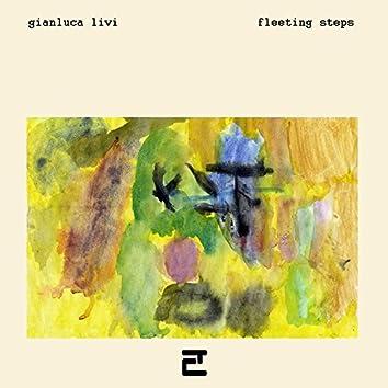 Fleeting Steps