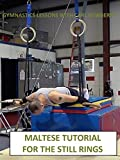 Maltese Tutorial for the Still Rings - Gymnastics Lessons with Carl Newberry