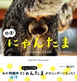 2020カレンダー 開運! にゃんたまカレンダー ([カレンダー])
