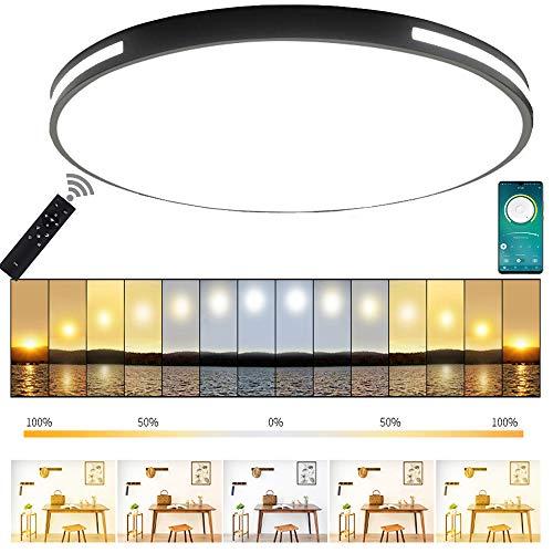 Preisvergleich Produktbild ERWEY 60cm Dimmbar LED Deckenleuchte mit Fernbedienung Lichtfarbe und Helligkeit einstellbar max. 60W Modern Deckenlampe Dicke 5cm Esszimmer Wohnzimmer geeignet (Schwarz Dimmbar,  60cm)