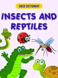 Insects & Reptiles  - Video Dictionary