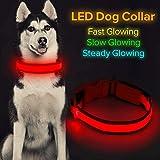 Collar de perro LED Micro USB recargable con luz brillante para mascotas cómodo y suave malla de seguridad para perros pequeños medianos grandes (M, rojo)