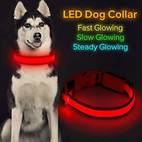 Iseen Collar de perro LED Micro USB recargable con luz brillante para mascotas, cómodo y suave malla de seguridad para perros pequeños, medianos y grandes (L, rojo)
