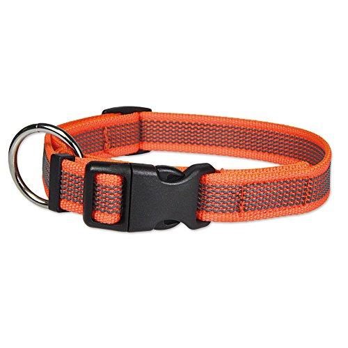Schecker Grip Colour Rainbow Orange Halsband Halsumfang S/M: 23-44 cm Verstellbar rutschfest 24 eingearbeitete Gummi-Filamente O-Ring mit Zugentlastung. 20 mm Breite