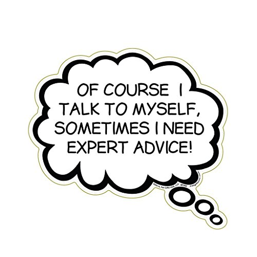 Of Course I Talk To Myself, Sometimes I Need Expert Advice Magnet
