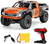 WANIYA1 RC Coche 1: 8 Doble-Motor de Alta Velocidad Amphibious Off-Road Vehicle Monster Truck 2.4GHz Monster Truck con protección Impermeable para niños Boys RC Toy Regalo (Size : 3 Battery)