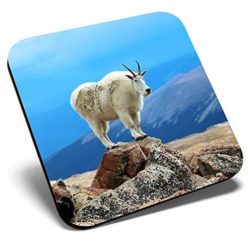 Posavasos cuadrado con diseño de cabra de montaña y bonita y brillante, de calidad brillante, protección de mesa para cualquier tipo de mesa #12619