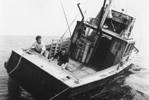 Nostalgia Store Póster de Richard Dreyfuss, Roy Scheider y Robert Shaw in Jaws (60 x 91 cm)
