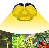 Niello Lámpara para plantas LED de 100 W con 3 alas, luz de cultivo completa de espectro completo, lámpara de cultivo ajustable a 120 grados para hortalizas y flores, apta para casquillo E26/E27