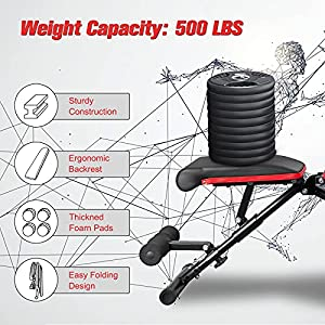 FISUP Weight Bench, Foldable & Adjustable Workout Bench for Full Body Exercise, Strength Training Bench, Incline/Decline Exercise Bench for Home & Gym Bench Press Bench