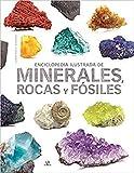 Enciclopedia Ilustrada De Minerales, Rocas y Fósiles: 13 (Grandes Enciclopedias)