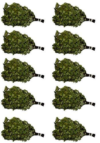 Dufte Momente 10 x Sauna Birken Reisig - jeder Reisig einzeln in Pappe verpackt luftgetrocknet ca. 220g Birkenreisig – Set ca. 50-60cm