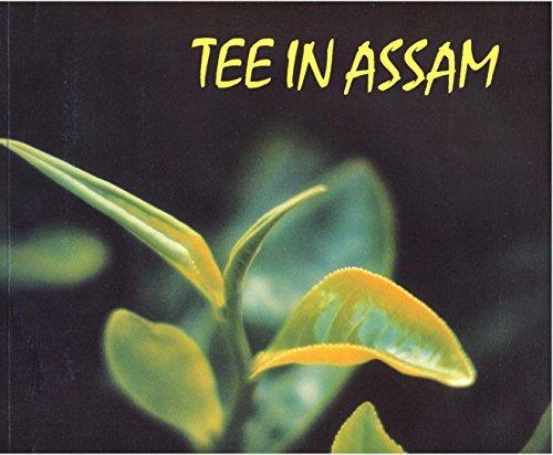Tee in Assam, dem fruchtbaren Land am Brahmaputra