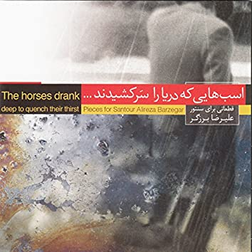 The Horses Drank Deep to Quench Their Thirst - Pieces for Santour Alireza Barzegar