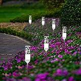 Gartenbeleuchtung B-right 6-in-1 Gartenleuchte mit Stecker, Gartenlampe mit Erdspieß, Wegleuchte Außenbeleuchtung mit Kabel, 5000K, IP65 Wasserdicht Wegbeleuchtung Gartenlicht für Outdoor