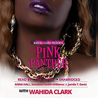 The Pink Panther Clique audiobook cover art