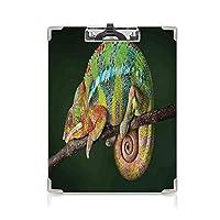 クリップボード A4 枝に寝ている爬虫類 学用品A4 バインダー カラフルなパンサー水平のエキゾチックな野生動物の写真哺乳類芸術的なデザイン装飾 A4 タテ型 クリップファイル ワードパッド ファイルバインダー 携帯便利マルチ