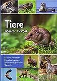 Tiere unserer Heimat: Das toll bebilderte Handbuch unserer abwechslungsreichen Tierwelt