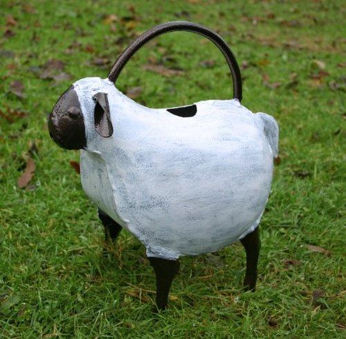 Arrosoir Mouton