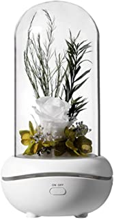 Uonlytech Essential Oil Diffuser Eternal Flower USB Charging Rose Flower LED Light Portable Cool Mist Humidifier for Home ...