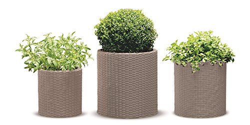 Keter Resin Wicker Cylinder Flower Pot Set of 3 Small, Medium, and Large...