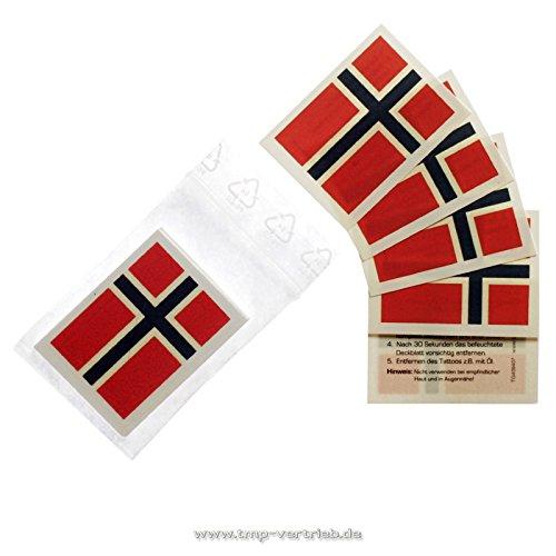 10 x Norwegen Tattoo Fan Fahnen Set - WM 2018 Norway temporary tattoo Flag (10)