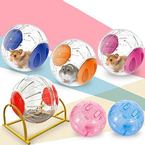 Dizie Hamsterball, transparent, niedlich, Hamster, Übung, Ball, Mini-Spielzeug, Kunststoff, 15 cm (zufällige Farbauswahl)