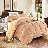 Manta de cachemira gruesa de cordero para invierno, manta de cordero de cachemira, mantas pesadas para cama doble de invierno, manta de forro polar para el hogar, dormitorio,marrón claro, 180cmx220cm