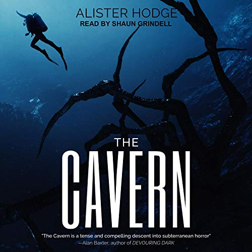 The Cavern cover art