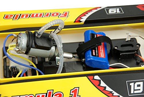Amewi 26034 Mad Shark F1 Boot Brushed 2.4 GHz RTR