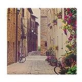Cojines de Suelo Cuadrados,Cojín de Asiento de cojín de Silla,Calle en Pienza Toscana Italia con cesto Colgante Plantas Flores Bicicletas,Sentado para Oficina,hogar,Suave Espesar