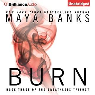 Burn audiobook cover art