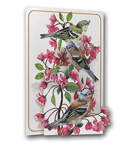 Chaffinches - Birds - a 3D Pop Up Greeting Card from The Pictoria Press