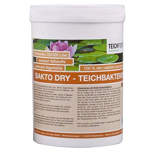 Teichpoint 500 g Bakto Dry Teich - Billionen von Mikro-Organismen