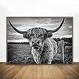 Carteles e impresiones Arte de pared de animales nórdicos Impresiones en lienzo de ganado blanco y negro Pintura Póster decorativo para sala de estar 70x100cm Sin marco