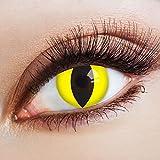 aricona Farblinsen Farbige Katzenaugen Kontaktlinsen Glowing Cat-Deckende Jahreslinsen für dunkle und helle Augenfarben ohne Stärke,Farblinsen für Karneval,Fasching,Motto-Partys und Halloween Kostüme