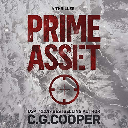Prime Asset audiobook cover art