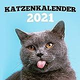 Katzenkalender 2021