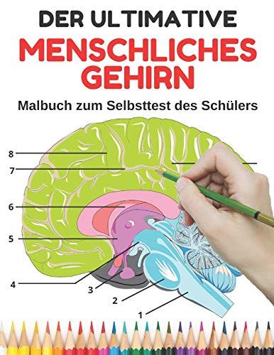 Der ultimative Menschliches Gehirn: Malbuch zum Selbsttest des Schülers. Eine einfache, unterhaltsame und intelligente Möglichkeit, Neuroanatomie zu ... Kinder (Neurowissenschaften Malbuch, Band 1)