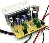 30 W DIY MONO AUDIO AMPLIFIER 4440 IC CIRCUIT KIT