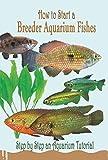 How to Start a Breeder Aquarium Fishes: Step by Step an Aquarium Tutorial: Guide to Marine Aquarium Fishes (English Edition)