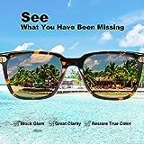 Zoom IMG-2 carfia occhiali da sole uomo