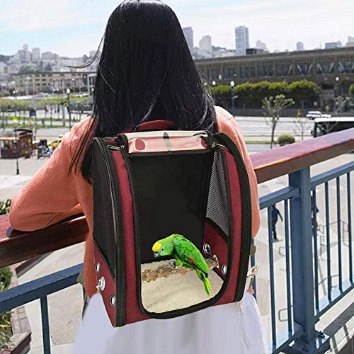 LINANNAN PET-Vogel-Reise-Tasche, beweglicher Haustier-Vogel-Papageien-Träger Transparent Breathable Travel Cage, Leichte Vogelträger, Vogel Travel Cage,rot
