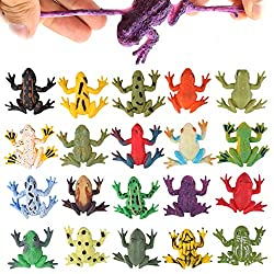 Realistic Frog Figures for Education