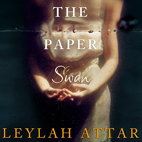 The Paper Swan cover art
