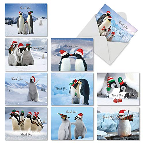 10 Penguins and Greetings Thank You Christmas Cards, Cute Penguin Family Gratitude Holiday Cards 4 x 5.12 inch, Winter Birds Holiday Notes, Fun Penguin Seasons Greetings Cards M2951XTG-B1x10