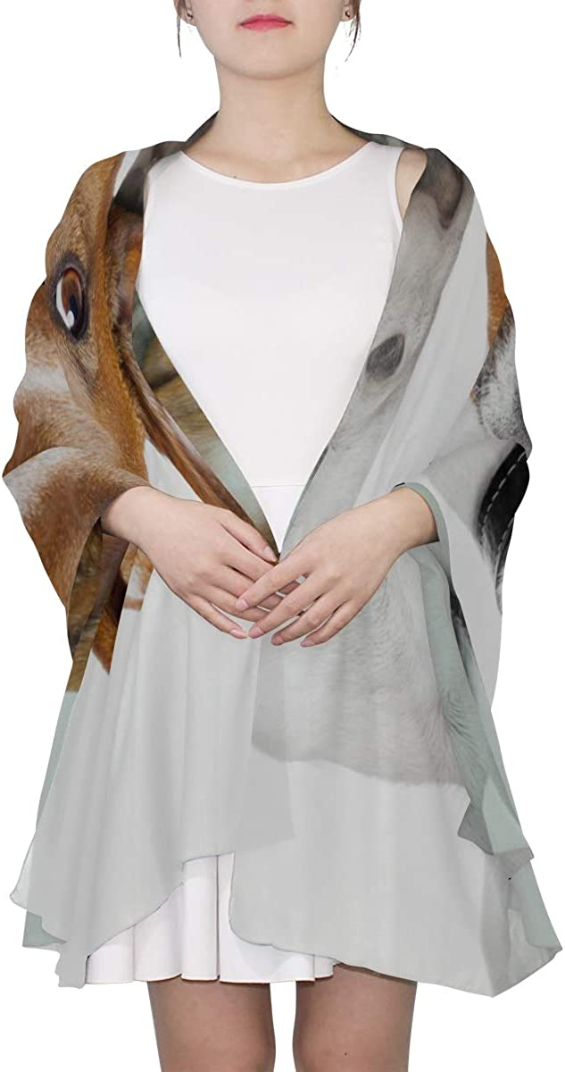 Basset Hound With Flying Ears Unique Fashion Scarf For Women Lightweight Fashion Fall Winter Print Scarves Shawl Wraps Gifts For Early Spring