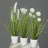 mucplants Kunstpflanze Gras im weißen Topf 3 Stück Höhe 38cm Grün/Creme Kunstgras Ziergras Tischdekoration